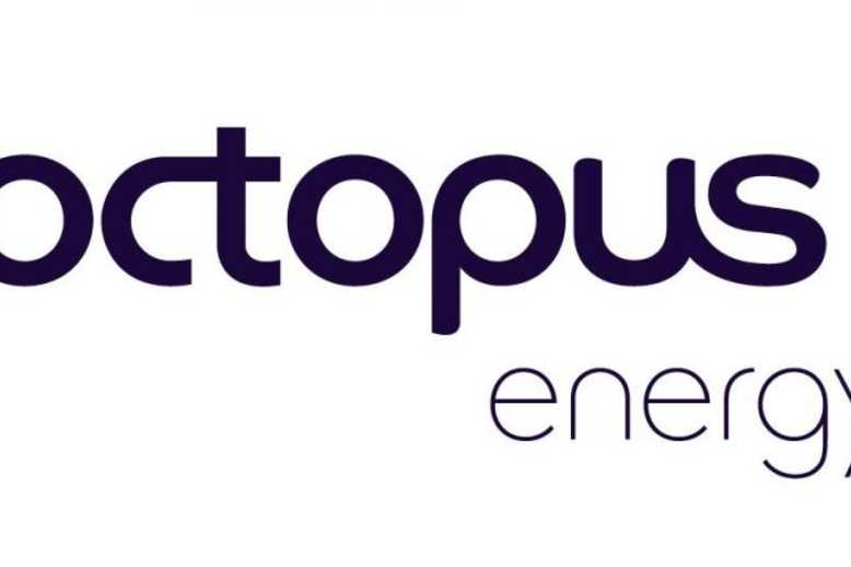 Octopus Energy Logo Icon